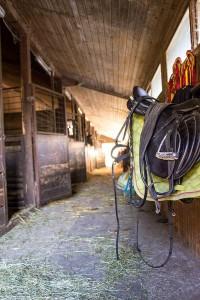 Pferdestall am  Reit- und Zuchthofes Strobl im Salzkammergut