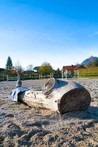 Springplatz am  Reit- und Zuchthofes Strobl im Salzkammergut