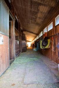 Pferdestall im  Reit- und Zuchthof Strobl im Salzkammergut